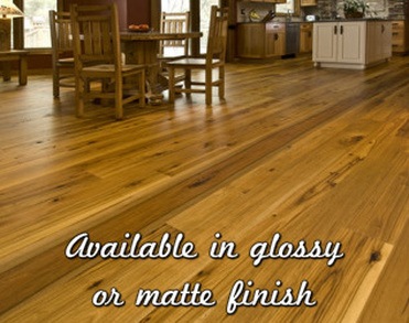 Freiberg Cleaning hardwood cleaning and refinishing